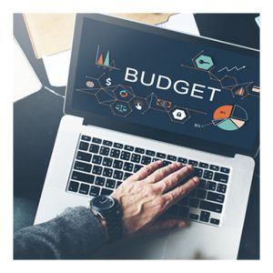 budget graphic on laptop